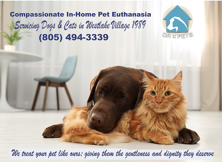 Westlake Village-euthanize pet at home